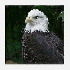 eagle Tile Coaster