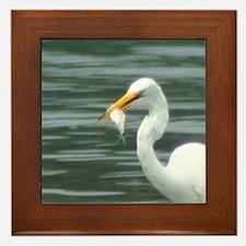 Great Egret with Fish Framed Tile