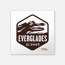"Everglades Square Sticker 3"" x 3"""