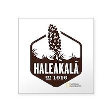 """Haleakala Square Sticker 3"""" x 3"""""""