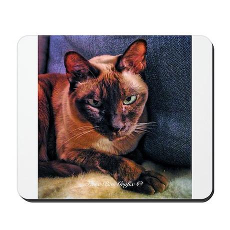 Tonkinese on Blue Sofa Mousepad