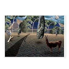 Dali's Llama Postcards (Package of 8)