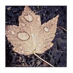 Autumn Leaf Tile Tile Coaster