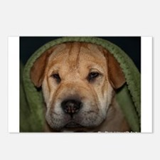 Pittie Postcards (Package of 8)