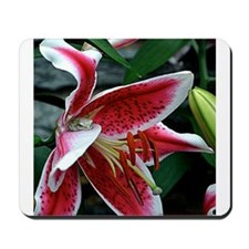 Lazy Lilly Days Mousepad