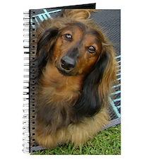 Dachshund Long Haired Journal