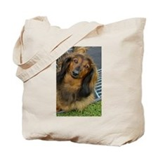 Dachshund Long Haired Tote Bag