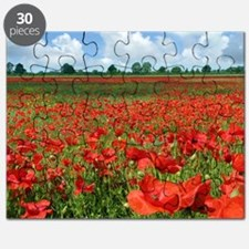 Poppy Fields Puzzle