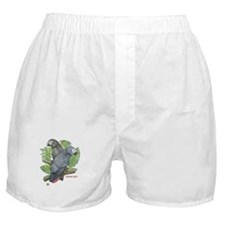 Tropical African Greys Boxer Shorts