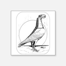 """Carrier Pigeon 1978 Square Sticker 3"""" x 3"""""""