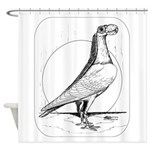 Carrier Pigeon 1978 Shower Curtain