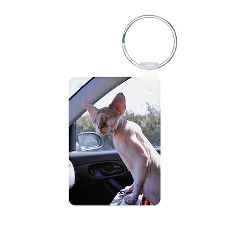 Little George Hairlesson Aluminum Photo Keychain