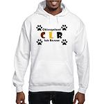 CLR Hooded Sweatshirt