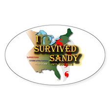 I Survived Sandy Decal