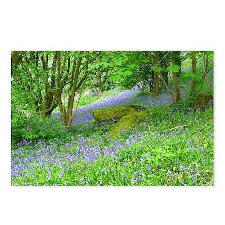 Bluebell Woods.jpg Postcards (Package of 8)