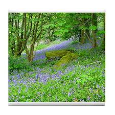 Bluebell Woods.jpg Tile Coaster