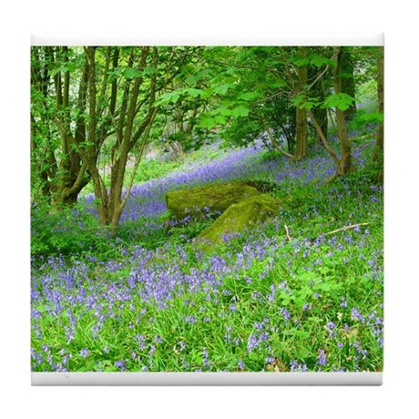 Bluebell Woods.jpg Tile Coaster