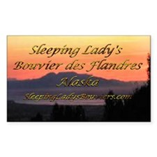 Sleeping Lady's Bouviers Rectangle Decal