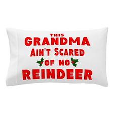 ren dr.png Pillow Case