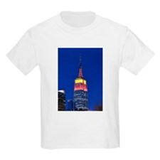 Empire State Building: No.2 T-Shirt