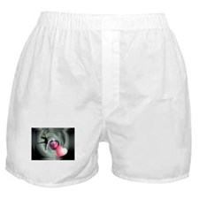 I Love to Dance Boxer Shorts