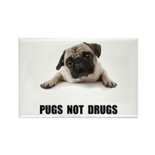 Pugs Not Drugs Black Rectangle Magnet (10 pack)