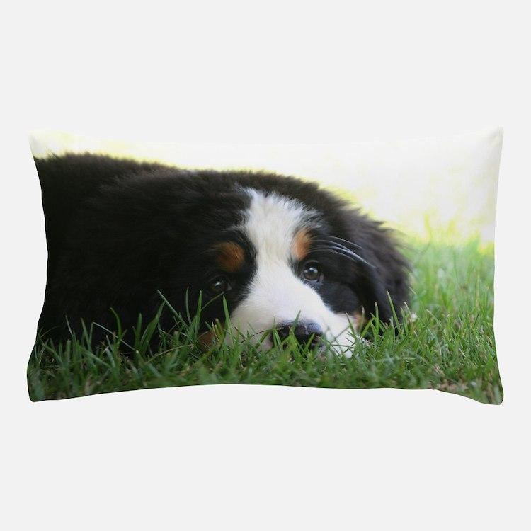 Bernese Puppy Pillow Case