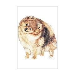 Pomeranian Pom Dog Posters