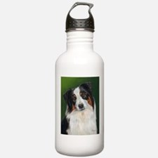 Australian Shepherd Tri Sports Water Bottle
