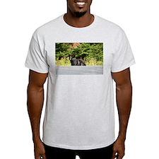 mother and cubs Ash Grey T-Shirt