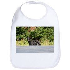 mother and cubs Bib