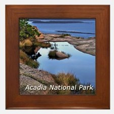 acadia1.jpg Framed Tile