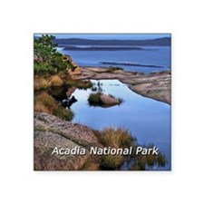 "acadia1.jpg Square Sticker 3"" x 3"""