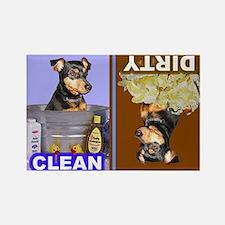 Dishwasher -RecMag -MinPin,BlkTnNat Magnets
