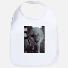 Support disabled cats-I didn't choose Bib