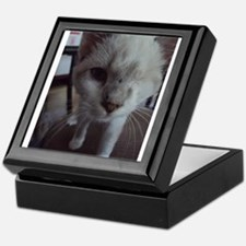 Support disabled cats-I didn't choose Keepsake Box