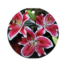 Lilly Explosion Ornament (Round)