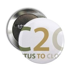 "Cactus to Clouds 2.25"" Button"