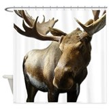 Moose Shower Curtains