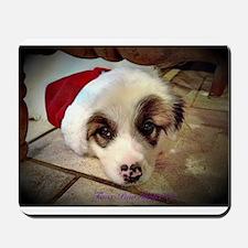 Christmas Pyrenees Mousepad