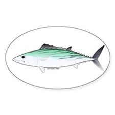 Bonito tuna fish Decal