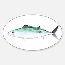 Bonito tuna fish Decal
