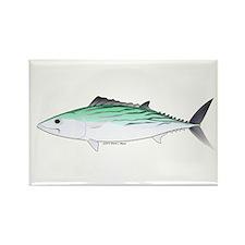 Bonito tuna fish Rectangle Magnet