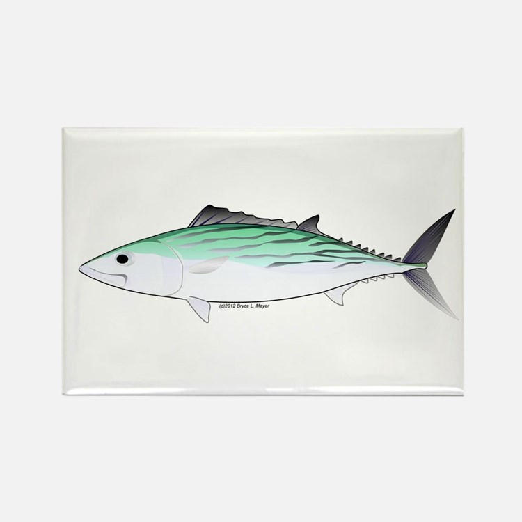Bonito tuna fish Rectangle Magnet