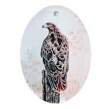 Redtail Hawk Oval Ornament