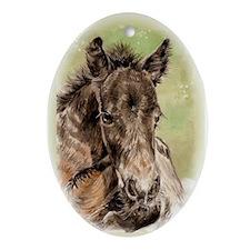 Newborn Foal Oval Ornament