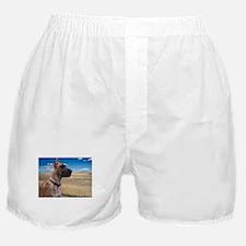 Prairie Dane Boxer Shorts