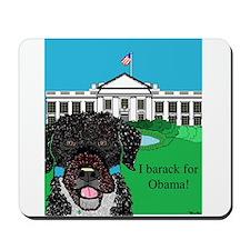 I barack for Obama! Mousepad