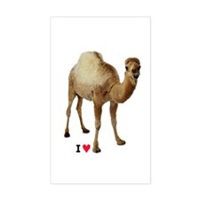 I LOVE CAMEL TOE - Decal