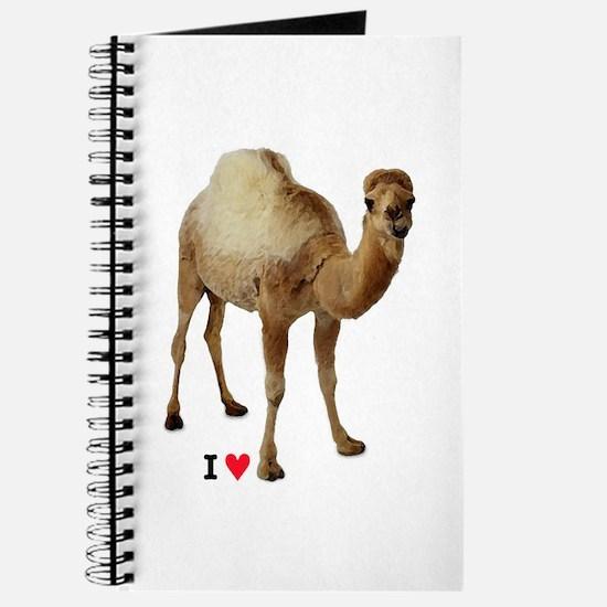 CAMEL TOE Journal